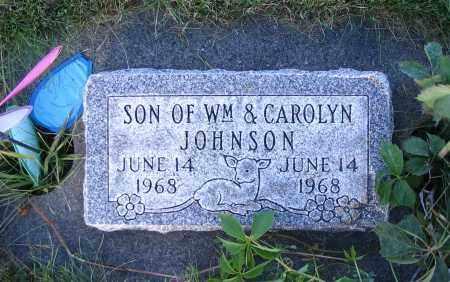 JOHNSON, SON - Cache County, Utah   SON JOHNSON - Utah Gravestone Photos