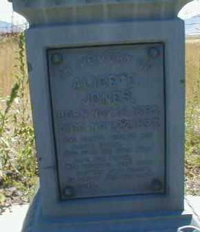 JONES, ALICE ELIZABETH - Cache County, Utah | ALICE ELIZABETH JONES - Utah Gravestone Photos