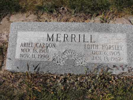 MERRILL, ARIEL - Cache County, Utah | ARIEL MERRILL - Utah Gravestone Photos