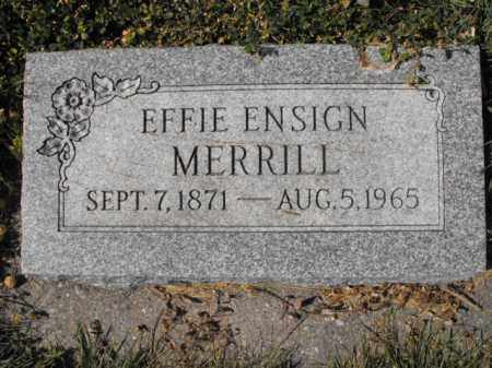 MERRILL, EFFIE - Cache County, Utah | EFFIE MERRILL - Utah Gravestone Photos