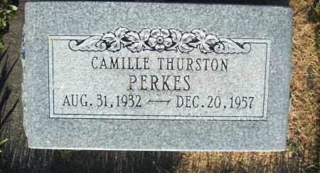 PERKES, CAMILLE - Cache County, Utah | CAMILLE PERKES - Utah Gravestone Photos
