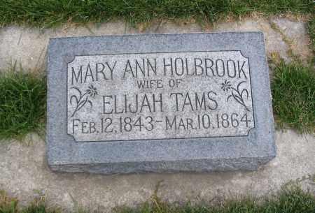 TAMS, MARY ANN - Cache County, Utah   MARY ANN TAMS - Utah Gravestone Photos