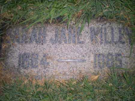 WILLEY, SARAH - Davis County, Utah   SARAH WILLEY - Utah Gravestone Photos