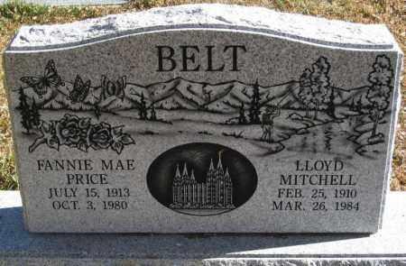 PRICE BELT, FANNIE MAE - Duchesne County, Utah | FANNIE MAE PRICE BELT - Utah Gravestone Photos