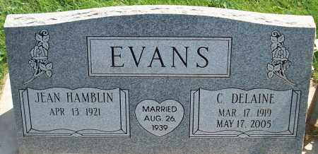 HAMBLIN EVANS, JEAN - Iron County, Utah | JEAN HAMBLIN EVANS - Utah Gravestone Photos