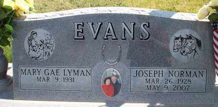 LYMAN EVANS, MARY GAE - Iron County, Utah | MARY GAE LYMAN EVANS - Utah Gravestone Photos