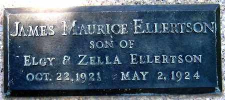 ELLERTSON, JAMES MAURICE - Juab County, Utah | JAMES MAURICE ELLERTSON - Utah Gravestone Photos