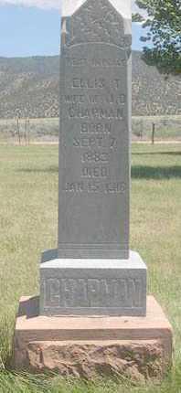 CHAPMAN, LYDIA ELLIS - Millard County, Utah | LYDIA ELLIS CHAPMAN - Utah Gravestone Photos