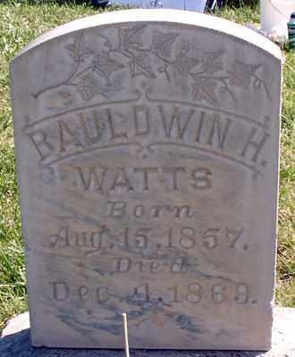 WATTS, BAULDWIN H - Millard County, Utah | BAULDWIN H WATTS - Utah Gravestone Photos