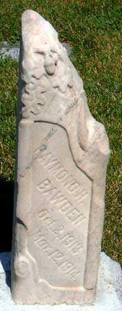 BAWDEN, RAYMOND H - Salt Lake County, Utah   RAYMOND H BAWDEN - Utah Gravestone Photos