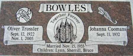 BOWLES, JOHANNA - Salt Lake County, Utah | JOHANNA BOWLES - Utah Gravestone Photos