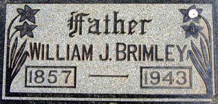 BRIMLEY, WILLIAM JEDEDIAH - Salt Lake County, Utah   WILLIAM JEDEDIAH BRIMLEY - Utah Gravestone Photos