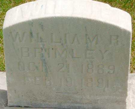 BRIMLEY, WILLIAM RAY - Salt Lake County, Utah | WILLIAM RAY BRIMLEY - Utah Gravestone Photos