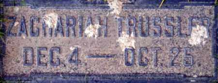 BUTTERFIELD, ZACHARIAH TRUSSLER - Salt Lake County, Utah | ZACHARIAH TRUSSLER BUTTERFIELD - Utah Gravestone Photos
