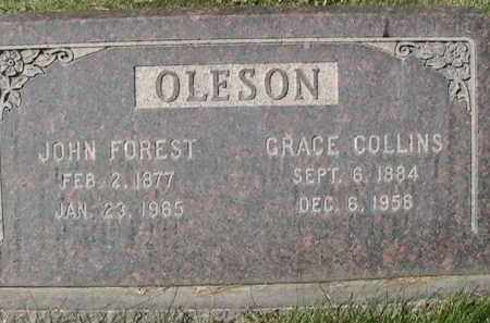 OLESON, GRACE ANN - Salt Lake County, Utah | GRACE ANN OLESON - Utah Gravestone Photos
