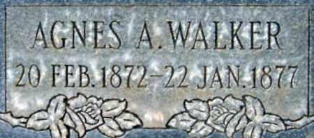 WALKER, AGNES ANN - Salt Lake County, Utah | AGNES ANN WALKER - Utah Gravestone Photos
