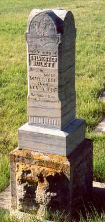 HULETT (MEX), SYLVESTER - Sanpete County, Utah | SYLVESTER HULETT (MEX) - Utah Gravestone Photos