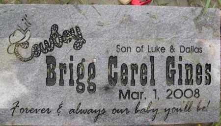 BRIGG GINES, CEREL - Summit County, Utah   CEREL BRIGG GINES - Utah Gravestone Photos