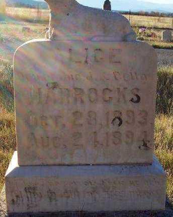 HORROCKS, ALICE - Summit County, Utah   ALICE HORROCKS - Utah Gravestone Photos