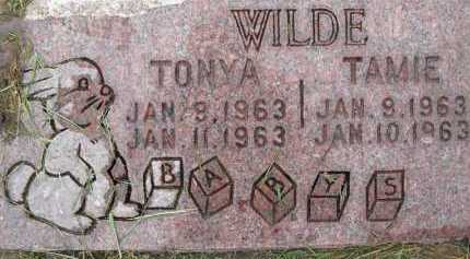 WILDE, TONYA - Summit County, Utah | TONYA WILDE - Utah Gravestone Photos