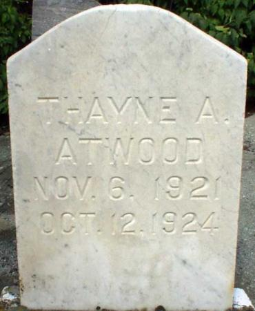 ATWOOD, THAYNE A. - Utah County, Utah | THAYNE A. ATWOOD - Utah Gravestone Photos