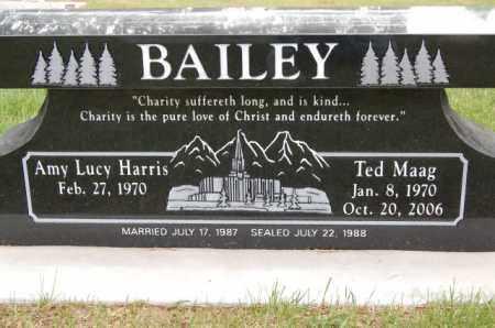 BAILEY, TED MAAG - Utah County, Utah   TED MAAG BAILEY - Utah Gravestone Photos