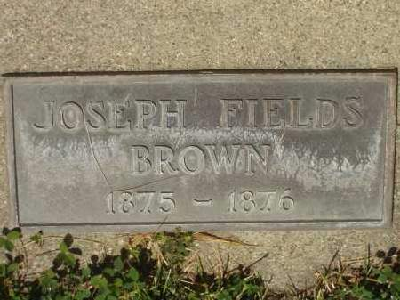 BROWN, JOSEPH FIELDS - Utah County, Utah | JOSEPH FIELDS BROWN - Utah Gravestone Photos