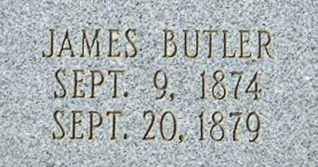 BUTLER, JAMES FREDRICK - Utah County, Utah   JAMES FREDRICK BUTLER - Utah Gravestone Photos