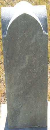 BUTLER, JAMES FREDRICK - Utah County, Utah | JAMES FREDRICK BUTLER - Utah Gravestone Photos