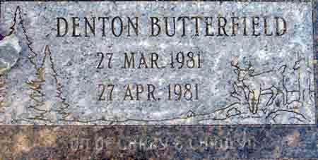 BUTTERFIELD, DENTON - Utah County, Utah | DENTON BUTTERFIELD - Utah Gravestone Photos