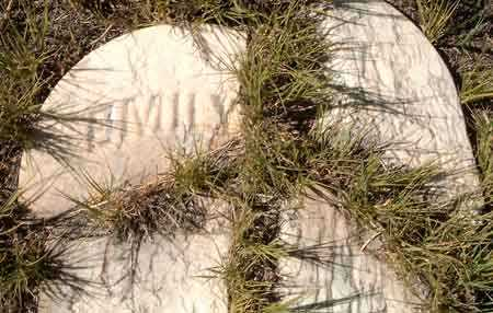 CARSON, EMILY ANN - Utah County, Utah | EMILY ANN CARSON - Utah Gravestone Photos