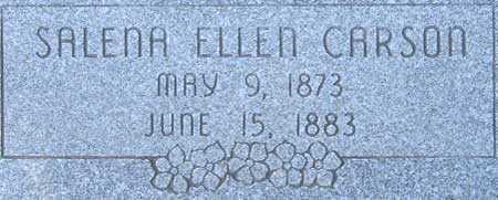 CARSON, SALENA ELLEN - Utah County, Utah | SALENA ELLEN CARSON - Utah Gravestone Photos