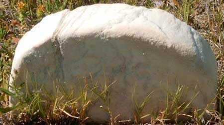 CARSON, UNKNOWN #3 - Utah County, Utah | UNKNOWN #3 CARSON - Utah Gravestone Photos