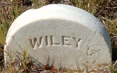 CARSON, WILEY - Utah County, Utah | WILEY CARSON - Utah Gravestone Photos