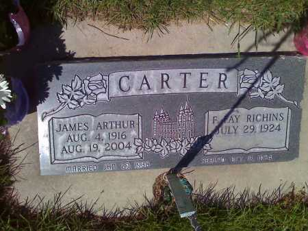 RICHINS CARTER, F. FAY - Utah County, Utah | F. FAY RICHINS CARTER - Utah Gravestone Photos