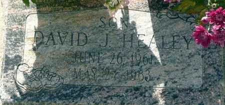 HEALEY, DAVID J. - Utah County, Utah   DAVID J. HEALEY - Utah Gravestone Photos