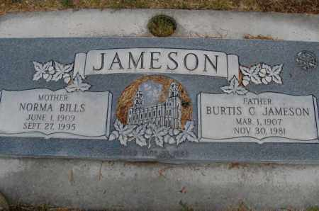 BILLS JAMESON, NORMA - Utah County, Utah | NORMA BILLS JAMESON - Utah Gravestone Photos