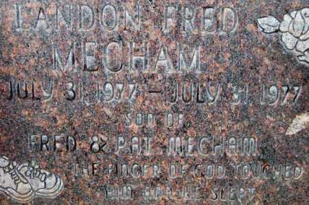 MECHAM, LANDON FRED - Utah County, Utah | LANDON FRED MECHAM - Utah Gravestone Photos