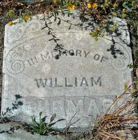 THOMAS, WILLIAM - Utah County, Utah | WILLIAM THOMAS - Utah Gravestone Photos