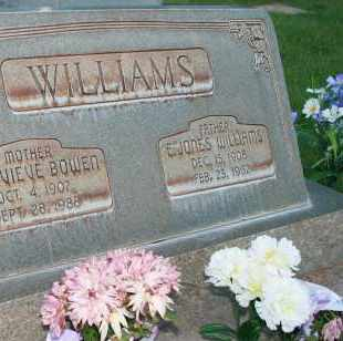 WILLIAMS, ERNST JONES - Utah County, Utah | ERNST JONES WILLIAMS - Utah Gravestone Photos