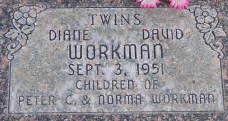 WORKMAN, DAVID - Utah County, Utah | DAVID WORKMAN - Utah Gravestone Photos