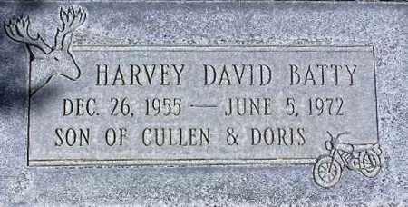 BATTY, HARVEY DAVID - Wasatch County, Utah | HARVEY DAVID BATTY - Utah Gravestone Photos