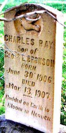 BRONSON, CHARLES RAY - Wasatch County, Utah   CHARLES RAY BRONSON - Utah Gravestone Photos