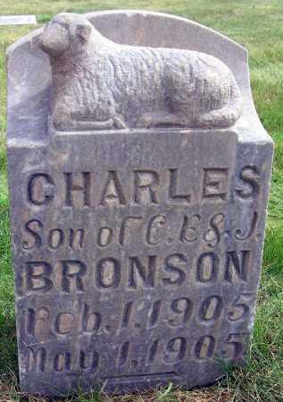 BRONSON, CHARLES - Wasatch County, Utah | CHARLES BRONSON - Utah Gravestone Photos