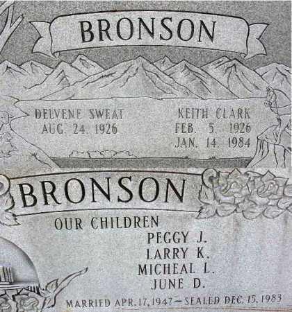 BRONSON, DELVENE - Wasatch County, Utah | DELVENE BRONSON - Utah Gravestone Photos