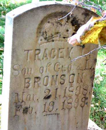 BRONSON, TRACEY LEMAN - Wasatch County, Utah | TRACEY LEMAN BRONSON - Utah Gravestone Photos