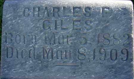GILES, CHARLES FINITY - Wasatch County, Utah | CHARLES FINITY GILES - Utah Gravestone Photos