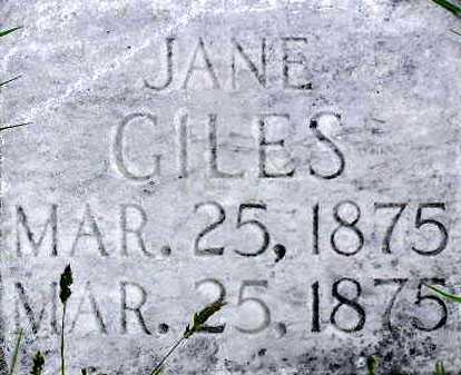 GILES, JANE - Wasatch County, Utah | JANE GILES - Utah Gravestone Photos