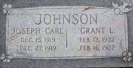 JOHNSON, GRANT L - Wasatch County, Utah | GRANT L JOHNSON - Utah Gravestone Photos