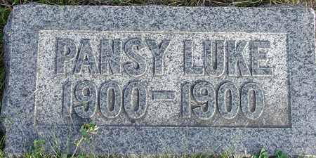 LUKE, PANSY - Wasatch County, Utah | PANSY LUKE - Utah Gravestone Photos